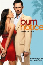 Watch Letmewatchthis Burn Notice Online
