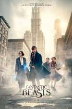 Watch Fantastic Beasts and Where to Find Them Letmewatchthis