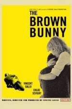 Watch The Brown Bunny Letmewatchthis