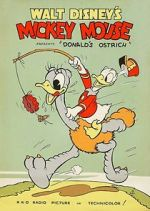 Watch Donald\'s Ostrich (Short 1937) Letmewatchthis