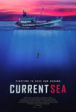 Watch Current Sea Letmewatchthis