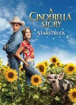 Watch A Cinderella Story: Starstruck Letmewatchthis